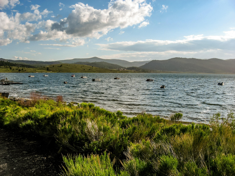 Panguitch lake utah fishing for Fish lake utah